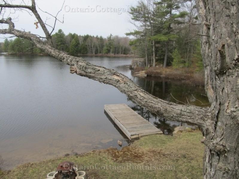 Ontario fishing lodges resorts and fishing information for Ontario fishing resorts